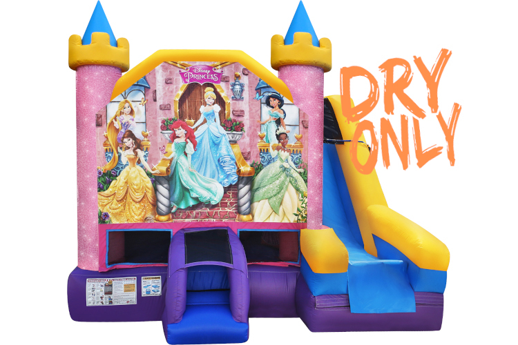 Disney Princess 6in1 (Dry)