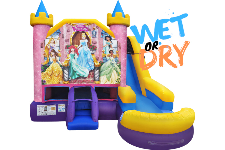 Disney Princess 6in1 (Wet)