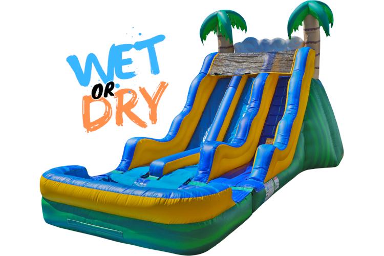 17' Dual Tropical Slide (Wet)